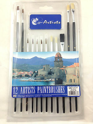 12 Piece Artist Brushes Paint Brush Set Flat & POINTED Different Size and Length