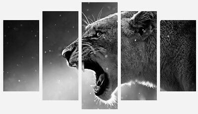 Black And White Lioness - Wild Animal Nature 5 Split Panel Wall Canvas Picture