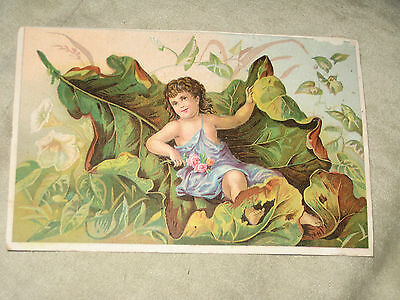 Antique Vtg Victorian Oak Leaf Soap Trading Card