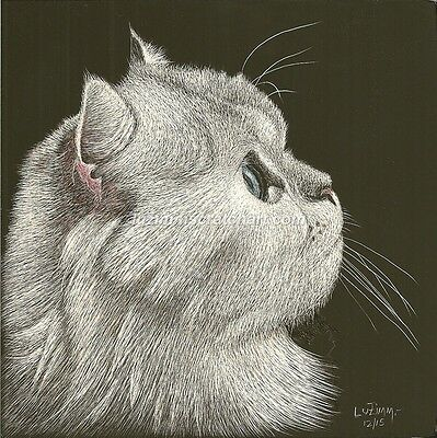 $25.00 OFF - Pets Dog Cat Persian ORIGINAL Scratchboard Art 6x6x1/8in  by LVZimm