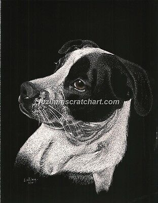 $30.00 OFF - Animal Pets Cat Dog Border Collie ORIG Scratchboard 8.5x11 by LVZ
