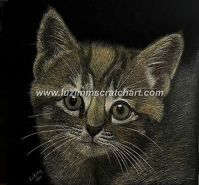 "$25.00 OFF - Pets Dog Calico Cat ORIGINAL Scratchboard Art 8""x8""x1/8""  by LVZimm"