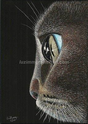 "$25.00 OFF - Animal Cat Kitten Dog  ORIG Scratchboard Art 5""x7""x1/8""  by LVZimm"