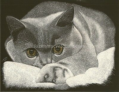 $25.00 OFF - Animal Cat Dog ORIGINAL Scratchboard regular board 8.5x11 by LuZimm