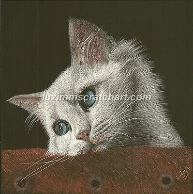 "$25.00 OFF - Pets Dog Cat ORIGINAL Scratchboard Art 8""x8""x1/8""  by LVZimmerman"
