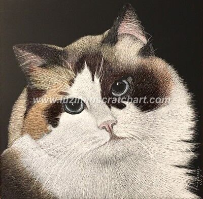 $30.00 OFF - Animal Ragdoll Cat Dog ORIGINAL Scratchboard Art 6x6x1/8in  by LVZ