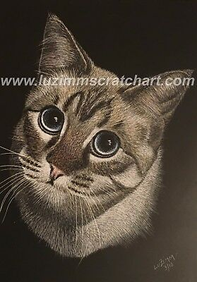 "$25.00 OFF - Pets Dog Cat ORIGINAL Scratchboard Art 5""x7""x1/8""  by LVZimmerman"