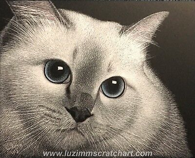 "$60.00 OFF - Pet Animal Cat Dog ORIGINAL Scratchboard Art 8""x10""x1/8"" by LVZ"