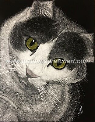 $40.00 OFF - Animal Pets Cat Dog ORIGINAL Scratchboard 11x14 reg. board  by LVZ