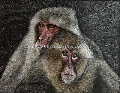 $50.00 OFF - Wildlife Snow Monkey Japanese ORIGINAL Scratchboard 8.5x11 by LuZ