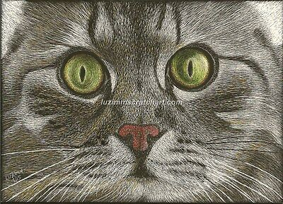 "$25.00 OFF - Pets Dog Cat Kitten ORIGINAL Scratchboard Art 5x7x1/8""  by LVZ"
