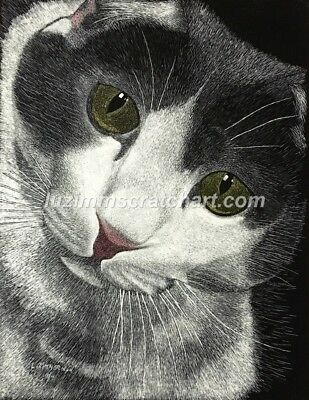 $25.00 OFF - Animal Pets Cat Dog ORIGINAL Scratchboard 8.5x11 by LV Zimmerman