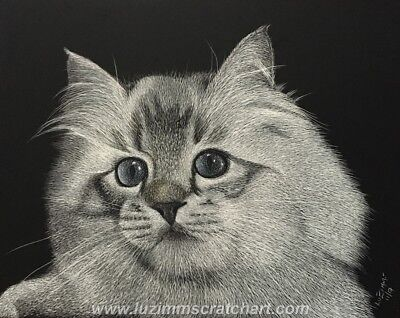 $25.00 OFF - Pets Cat Siberian Kitten Dog ORIG Scratchboard Art 8x10x1/8 by LVZ