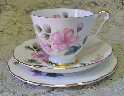 Vintage Queen Anne Pink Green Floral Trio Cup Saucer Plate Made In England