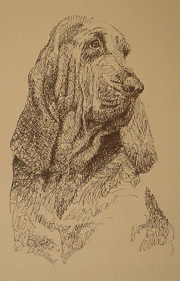 BLOODHOUND DOG ART Signed Kline Print #48 DRAWN FROM WORDS Your dogs name free.