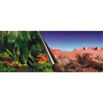 Poster fond d'aquarium - 80 x 40 cm - Imprime Jungle / Desert