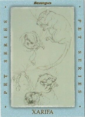 1996 Tempo Beatrix Potter Peter Rabbit Pet Series chase card # PS6 of 8