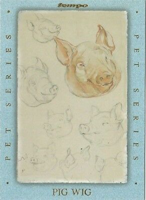1996 Tempo Beatrix Potter Peter Rabbit Pet Series chase card # PS8 of 8