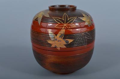 K4122: Japanese Wooden Autumn leaves gold lacquer pattern FOOD BOXES Lunch Box