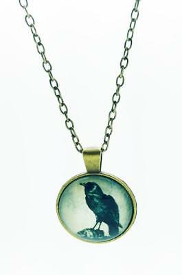Black Raven On Skull Art Pendant Necklace With Chain