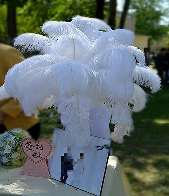 Beautiful 100 pcs white ostrich feathers 14-16 inch/35-40 cm Wedding