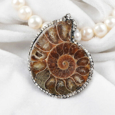 5Pcs Ammonite Fossil Paved CZ Edge Pendant Bead Handmade For DIY Jewelry BJA329