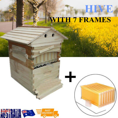 New Wooden Beekeeping Beehive Brood House Box +7pcs Auto Flow Honey Hive Frames