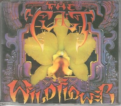 The Cult  CD-SINGLE  WILDFLOWER  (c)  1987