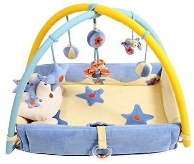 Baby Play Gym Activity Sensory Plush Mat with sides - Blue Teddy by Babyhugs