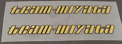 Miyata Down Tube Decals sku miya101 Metallic Gold 1 Pair
