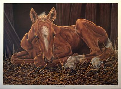 """Hello World"" by Gail Adams - Horse foal Limited Edition art print"