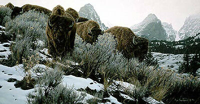 """MOUNTAIN ECHOES"" - Rod Frederick  AP ARTIST PROOF limited edition Buffalo Bison"