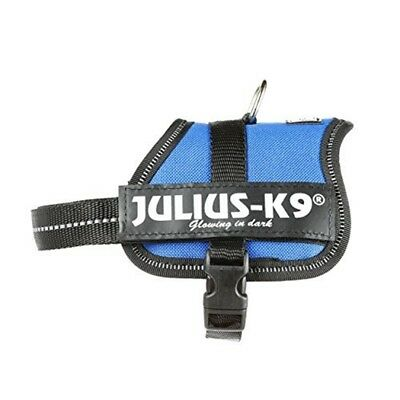 Julius-k9, 162b-bb2, Powerharness, Size: Baby 2, Blue - Harness Dog K9 Juliusk9