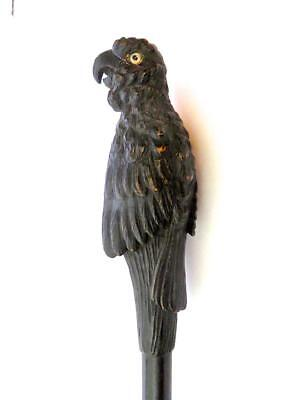 Antique Finely Carved Full Body Glass Eyed Parrot Carved Wood Walking Stick
