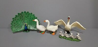 Schleich lot of 5 Peacock 14673 Swan Chicks and 2 Goose (retired)