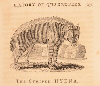 1791 A General History of Quadrupeds Second Edition Woodcuts by Thomas Bewick