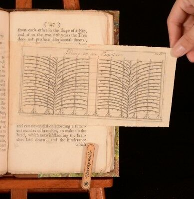 1717 Paradise Retriev'd. Managing and Improving Fruit Trees S Collins Scarce 1st