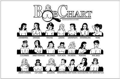 Boob Chart Metal Sign