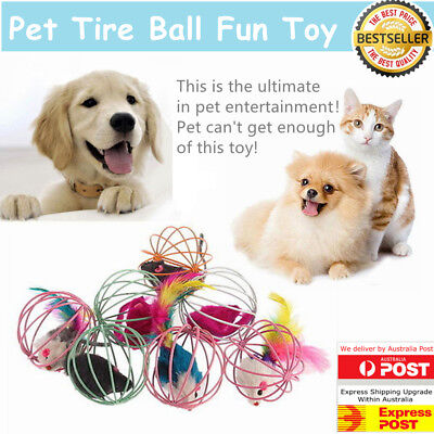 Fun Gift Play Playing Toys False Mouse in Rat Cage Ball For Pet Cat Kitten AU#