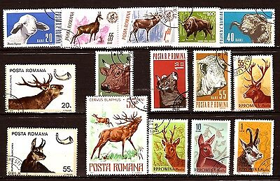 100T2 ROMANIA :Animals to horns ,deer,cows,oxen,Deer; 15 T canceled