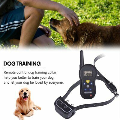 Remote Contorl Dog Training Collar Rechargeable 500M Anti-Barking Electric Shock