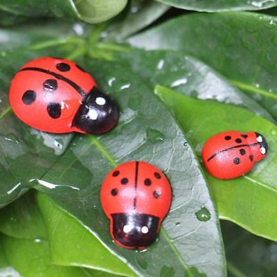 100Pcs Miniature Ladybird Ladybug Ornament Figurine Fairy Dollhouse Garden Decor