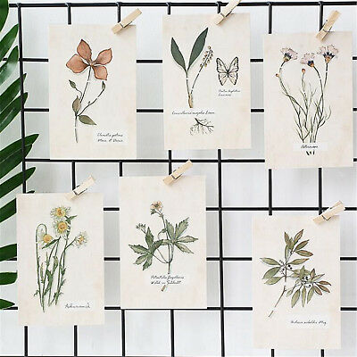 Lot of 30 Travel Postcard Flower Butterfly Specimen Printed Posters Wall Decor