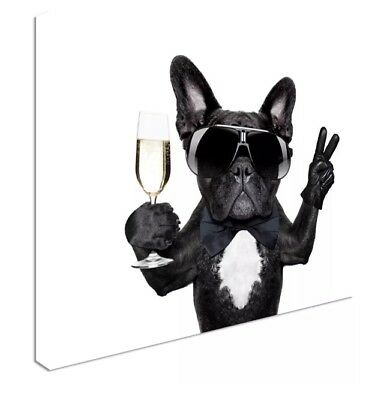 French bulldog champageHD CANVAS WALL ART DECO LARGE READY TO HANG NIGHT all siz