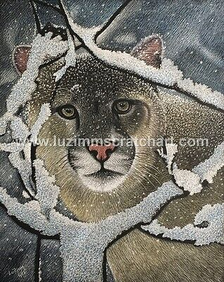 Wildlife Mountain Lion Tiger ORIGINAL signed Scratchboard 8x10x1/8 by LuZimm