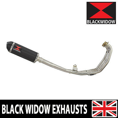 CBR 600 F 2001 2002 FS1 FS2 SPORT Exhaust System with Full Carbon Silencer 300CT