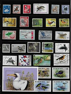 BIRDS Thematic STAMP Collection MINT and USED Ref:TS592
