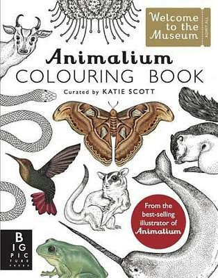 Animalium Colouring Book (Welcome to the Museum) by Baker, Kate   Paperback Book