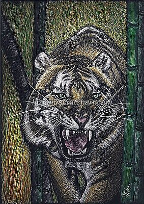 "Wildlife Lion Tiger ORIGINAL signed Scratchboard Art 5""x7""x1/8""  by LuZimm"