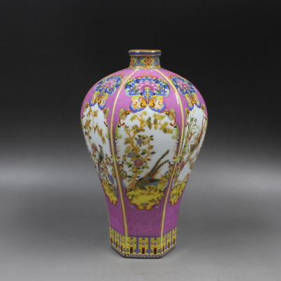 """8.9""""Chinese antiques  the Qing dynasty Enamel Flowers and birds  Six party bottl"""